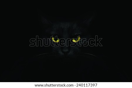 Black cat on black background with bright yellow eyes