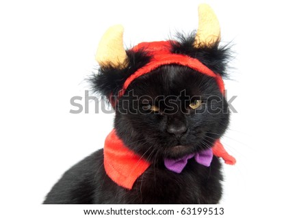 Black cat wearing devil horn at for Halloween on white background