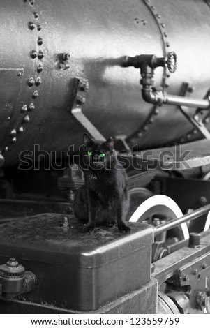 black cat with green eyes on black vintage train locomotive