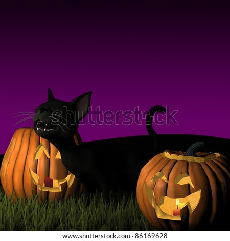 Black Cat with Halloween Pumpkins at night