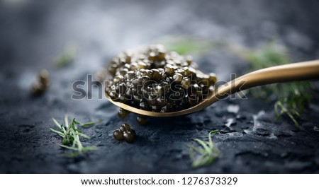 Black Caviar in a spoon on dark background. High quality real natural sturgeon black caviar close-up. Delicatessen. Texture of expensive luxury caviar. Food Backdrop