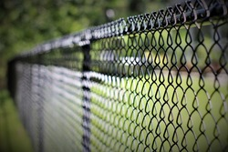 Black Chainlink Fence 1