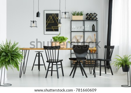 Black chairs at dining table in bright dining room with ferns and dark poster on white wall #781660609