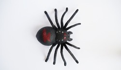 Black clockwork plastic toy spider on a white background, close up.?oncept of celebrating the day of the dead, Halloween.Top view, flat lay.