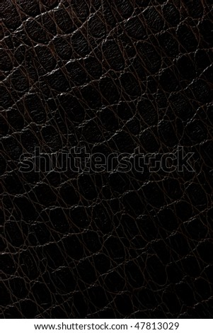 black crocodile leather pattern