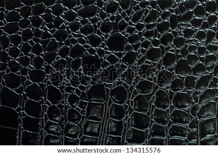 black crocodile leather texture with for background stock