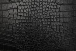Black crocodile skin, background, texture.