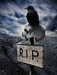 Black crow sits on a human skull impaled with a sign in the middle of a rocky desert