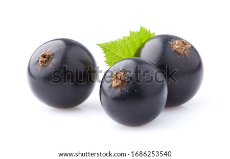 Black currant berry isolated on white background Foto stock ©