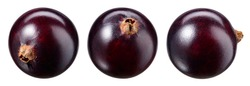 Black currant isolate. Currant black berries on white background. Currant with clipping path. Top view. Side view. Set with full depth of field.