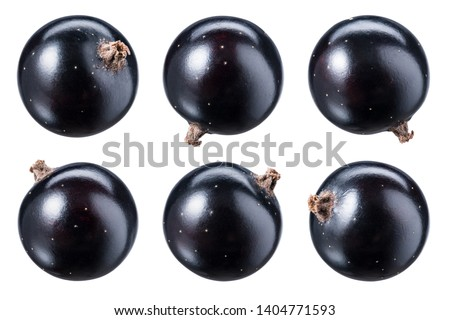 Black currant isolate. Top view. Currant black berries isolated on white background with clipping path. Black currant set with full depth of field. Foto stock ©