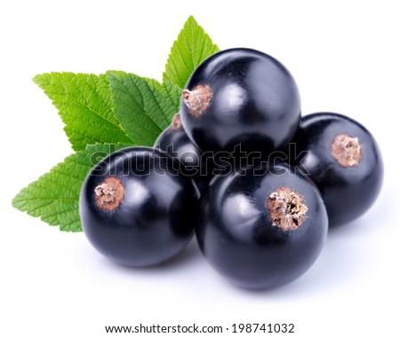 black currants Foto stock ©