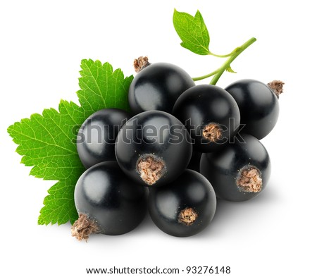 Black currants isolated on white