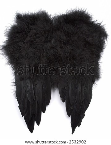 Black feather wings on a white background