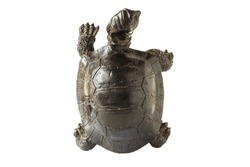 Black figurine of a turtle on a white background, top view.