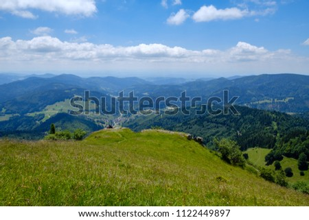 Black Forest Belchen: Belchen Nature Reserve, Baden-Württemberg. The Belchen, 1,414 metres (4,639 ft), is the fourth highest summit of the Black Forest after the Feldberg, Seebuck and the Herzogenhorn