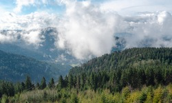 Black forest mountains covered by clouds and fir forest on a spring sunny day, in Germany. Alpine landscape and white clouds. Travel destination.