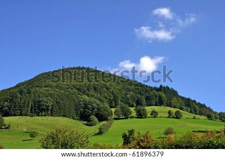 Black forrest landscape