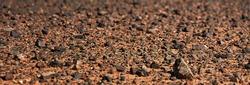 Black Gobi. Stony desert, black stones on the sand. Abstract natural background.