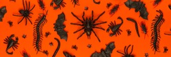 Black Halloween creepy crawly bugs and spiders on orange background