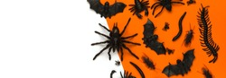 Black Halloween creepy crawly bugs and spiders on orange background with blank white space for text or image