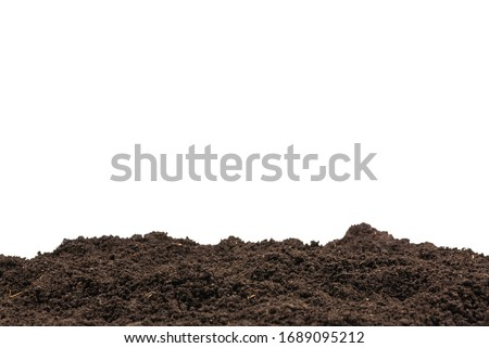 Black land for plant background. Top view.  Сток-фото ©