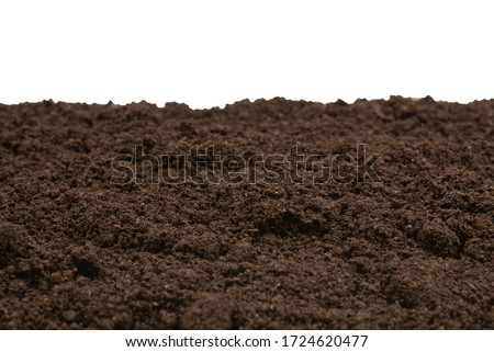 Black land for plant isolated on white background. Top view.  Stock photo ©