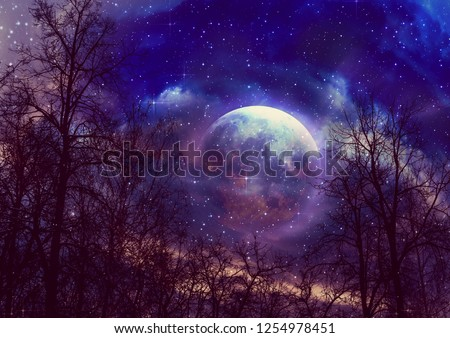 Black leafless tree branches over starry sky with full moon background. Elements of this image furnished by NASA