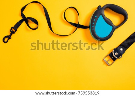 Black leather dog collar and blue leash attached on yellow background. Top view
