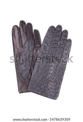 Black leather gloves. A pair of leather gloves isolate on a white background. Ostrich leather gloves.
