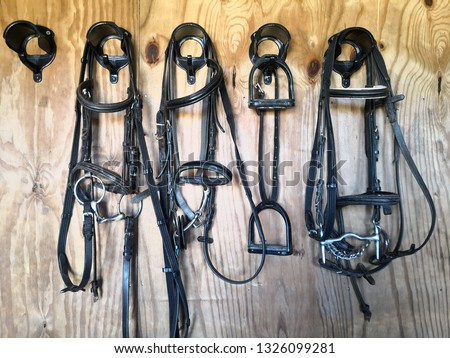 Black leather horse bridles hanging up in the stable tack room on  a clean wooden background.Two simple Egg butt snaffle bitted pony bridles, one bridle with Kimberwick bit,and black stirrups irons.