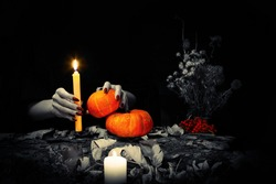 Black magic ritual. Witches hands with sharp long nails hold a candle and little pumpkins among dry herb, nuts, dead leaves, acorns, ashberry background, selected focus, low key. Samhain, Halloween