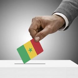 Black male holding flag. Voting concept - Senegal