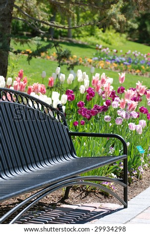Black metal park bench with tulips blooming and green grass in the background.