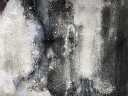 Black mold or black stains on concrete surface. Black and white weathered cement wall for background and texture. (close up, space for text)