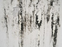 Black mold or black stains on concrete surface. Weathered peeling white painted cement wall background and texture. (close up, space for text)