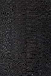 Black natural snakeskin texture. Background.