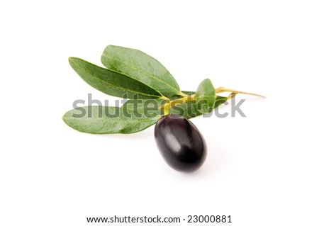 Black olive fruit with leaves isolated on white background
