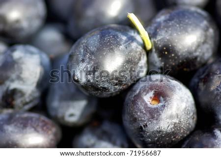 Black olives .