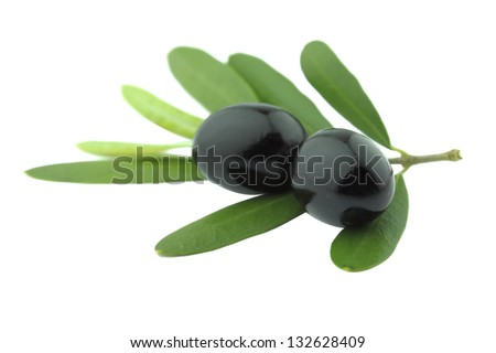 Black Olives with leaves on a white background