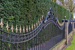 Black painted iron fence mounted at a small wall of brickstones in front of a conifer hedge