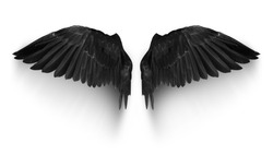 Black pairs of angle wings or parrot wings isolate with clipping path on white background