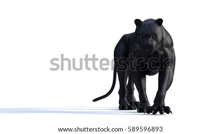Black panther isolate on white background, Black tiger, 3d Illustration, 3d render