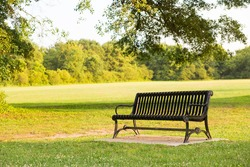 Black park bench in a park during warm summer sunset with green field and trees background