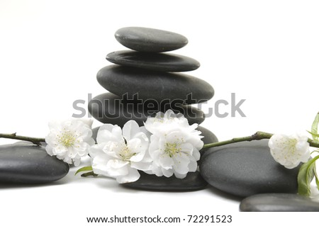 black pebbles with beauty orchid isolated on white