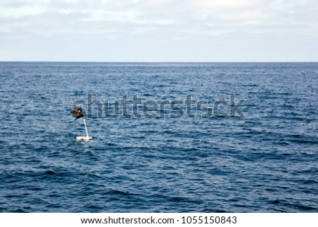 Black piece of cloth attached to a pole sticking out of a submerged floating container and used as a marker or buoy in open sea that can be found off the coast of Ventura county, California #1055150843