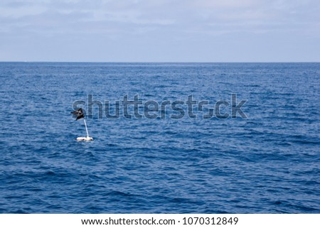 Black piece of cloth attached to a pole sticking out of a submerged floating container and used as a marker or buoy in open sea that can be found off the coast of Ventura county, California #1070312849
