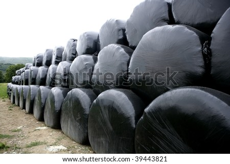 Black plastic wrap cover for wheat cereal bales outdoor