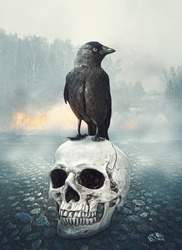 Black raven on the skull. Halloween mystical scene