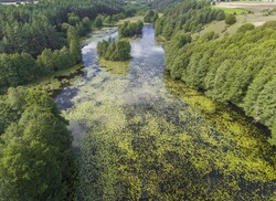 Black River Hancza in Turtul. Suwalszczyzna, Poland. Summer time. Green landscape and white clouds over blue sky. Viiew from above.